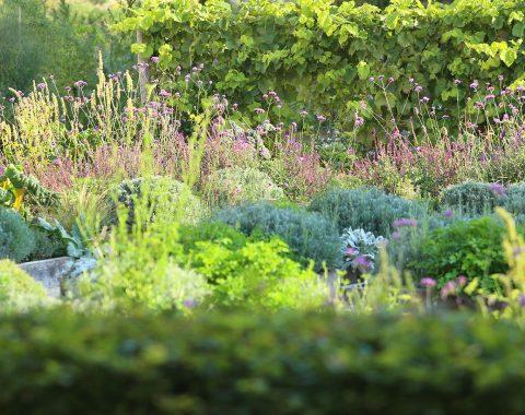 Bylinková zahrada Valtice