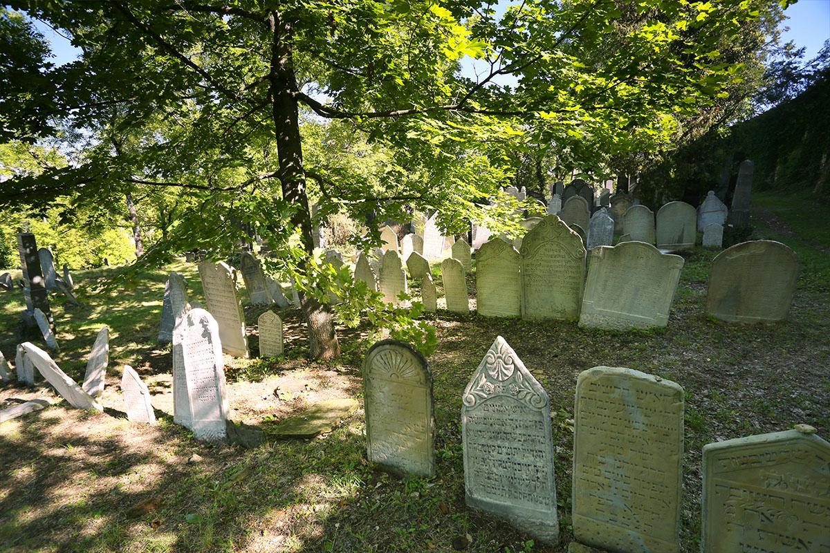 Židovský hřbitov v Mikulově